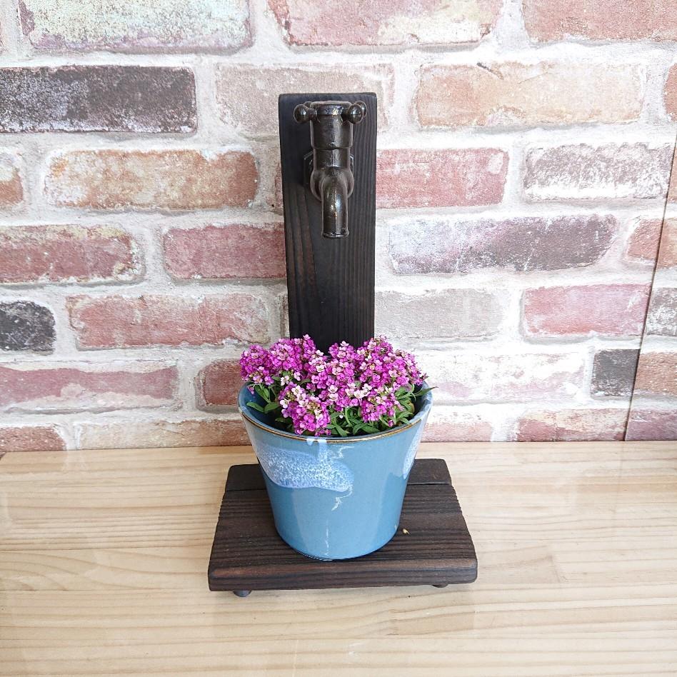 蛇口付きプランター 和テイスト 植物 観葉植物 プレゼント インテリア 寄せ植え