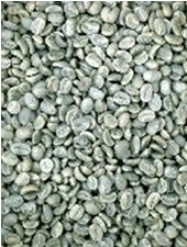 【1㎏】コーヒー生豆 ブルーマウンテンNO.1 ブルーバロン プレミアムコーヒー こだわりコーヒー カフェ 送料無料_画像1