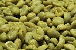 【1㎏】コーヒー生豆 エチオピア イリガチャフ G-1 コチャレ ウォッシュ 生豆 プレミアムコーヒー 自家焙煎 送料無料_画像1