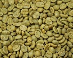 【10㎏】コーヒー生豆 エチオピア レケンプチG-4 生豆 スタンダードコーヒー モカ ブレンドコーヒー カフェ 送料無料_画像2