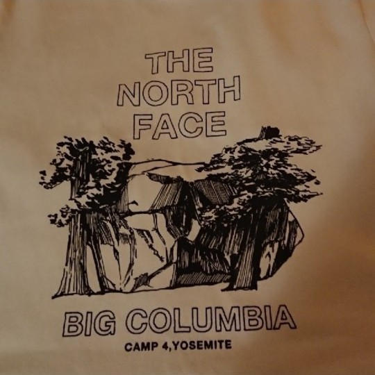 THE NORTH FACE   ザ・ノース・フェイス  Tシャツ レディース