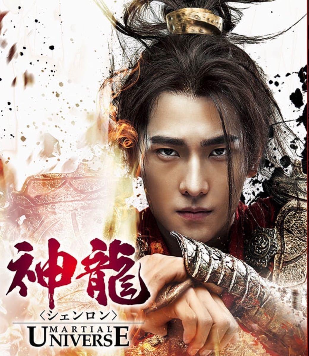 中国ドラマ 神龍 (シェンロン)