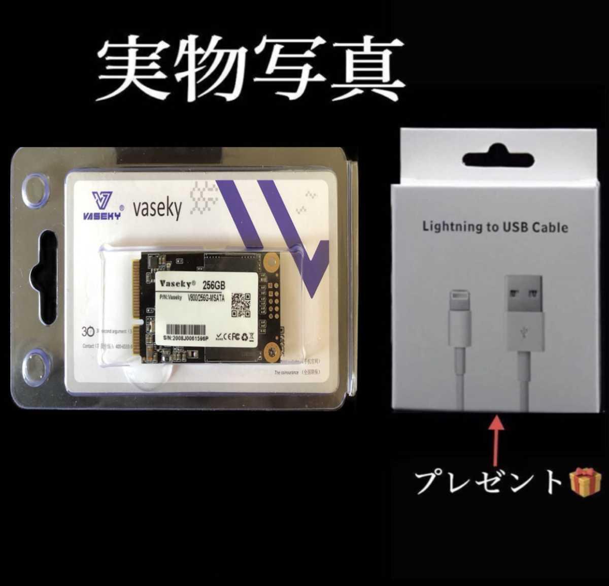 SSD 256GB mSATA Vaseky 新品 未開封SSD mSATA 256GB テレワーク推薦品 (送料無料 プレゼント付)