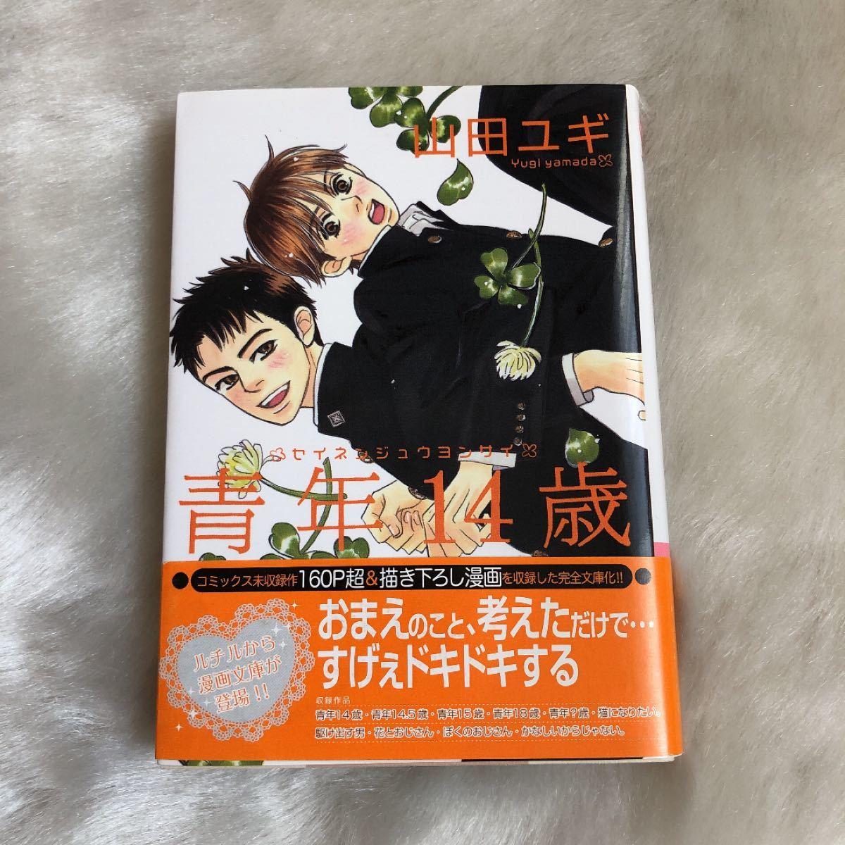 山田ユギ『青年14歳』(文庫漫画)