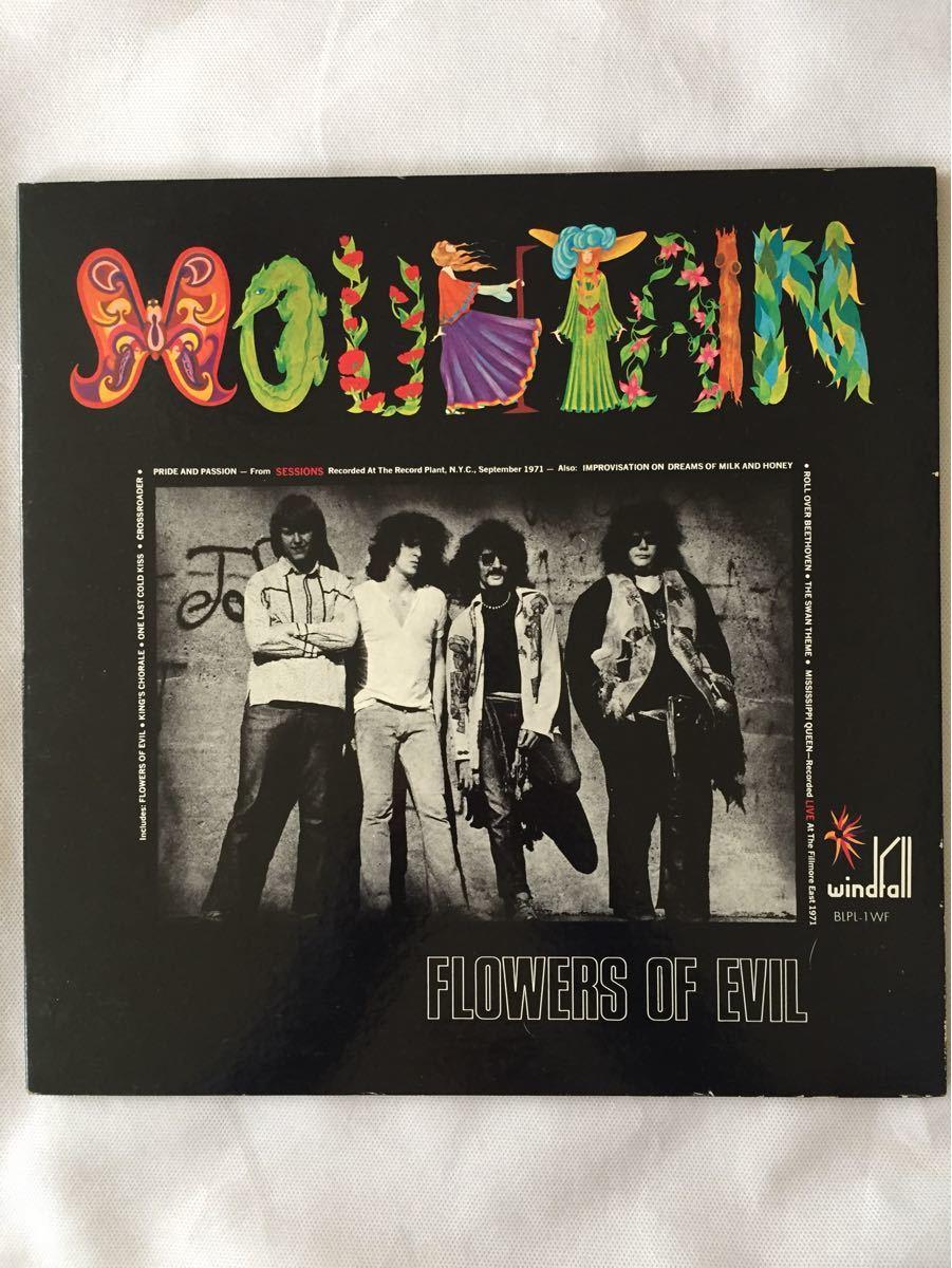 LPレコード  MOUNTAIN (マウンテン) / FLOWERS OF EVIL (フラワー・オブ・エビル)