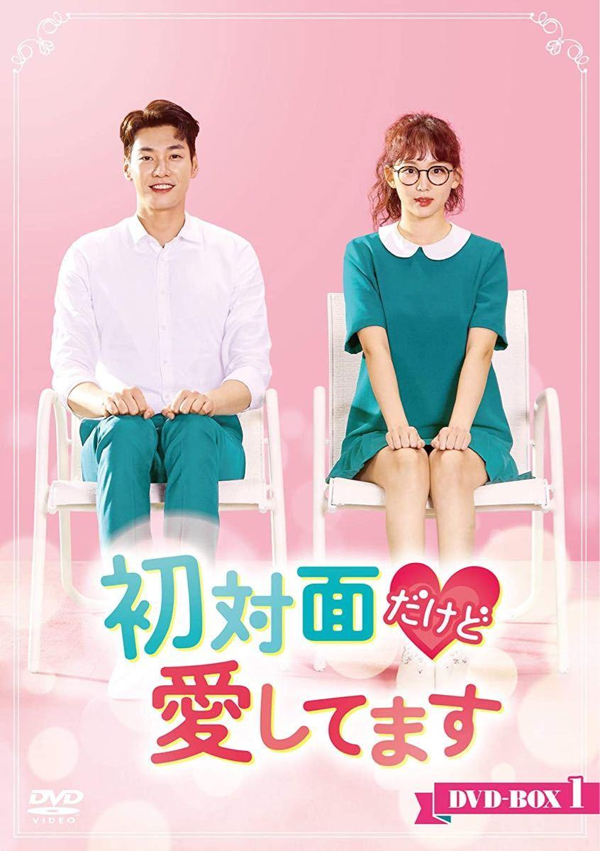 韓国ドラマ 初対面だけど愛してます 全話収録 DVD