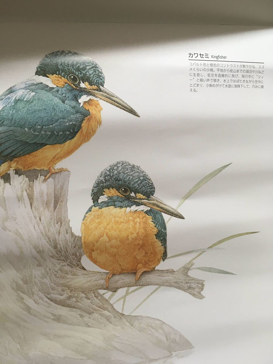 ★2021★鳥の壁掛けカレンダー★スリムで便利!★大安入り★bird★バード_画像4
