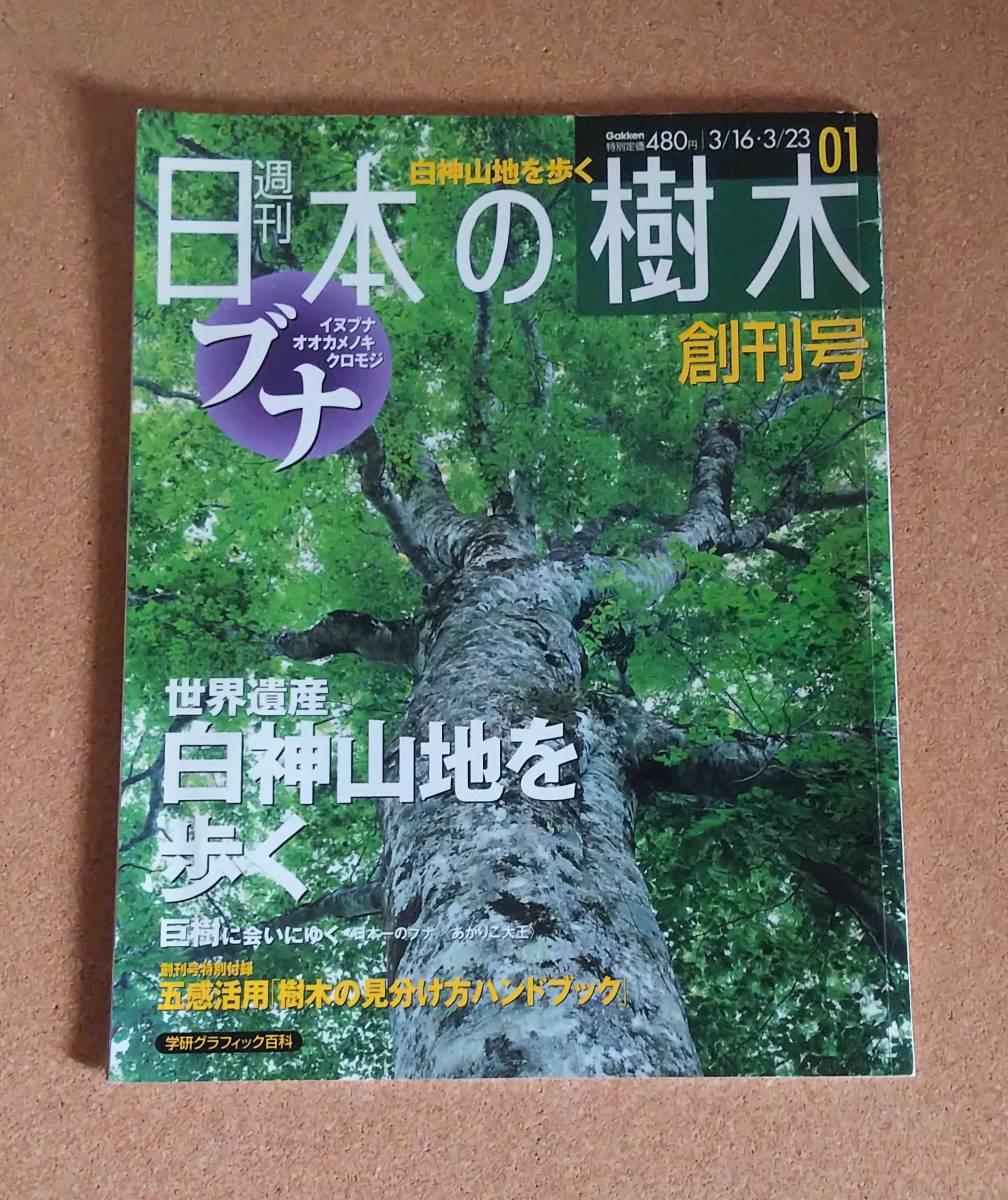 ☆日本の樹木☆_画像1