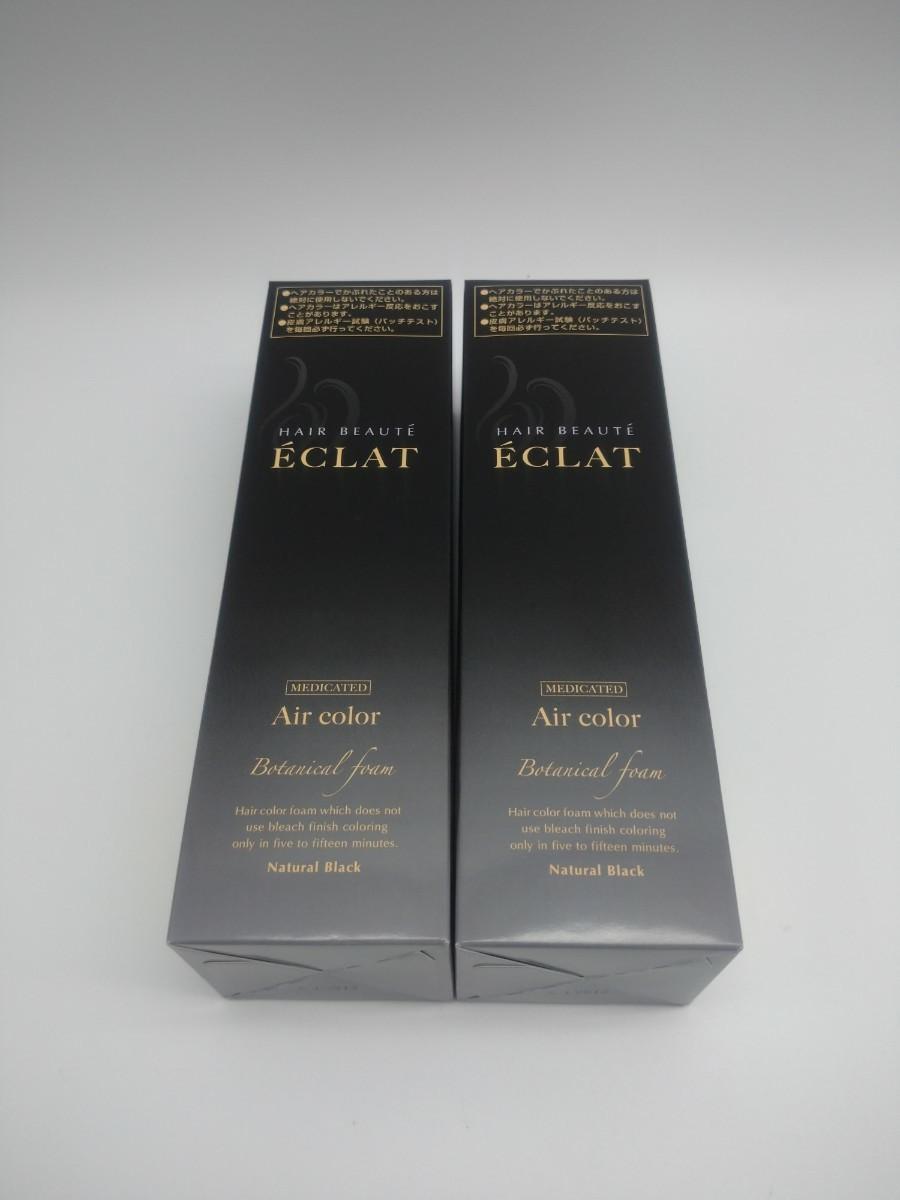 ヘアボーテ エクラ ボタニカルエアーカラーフォーム ブラック150g×2