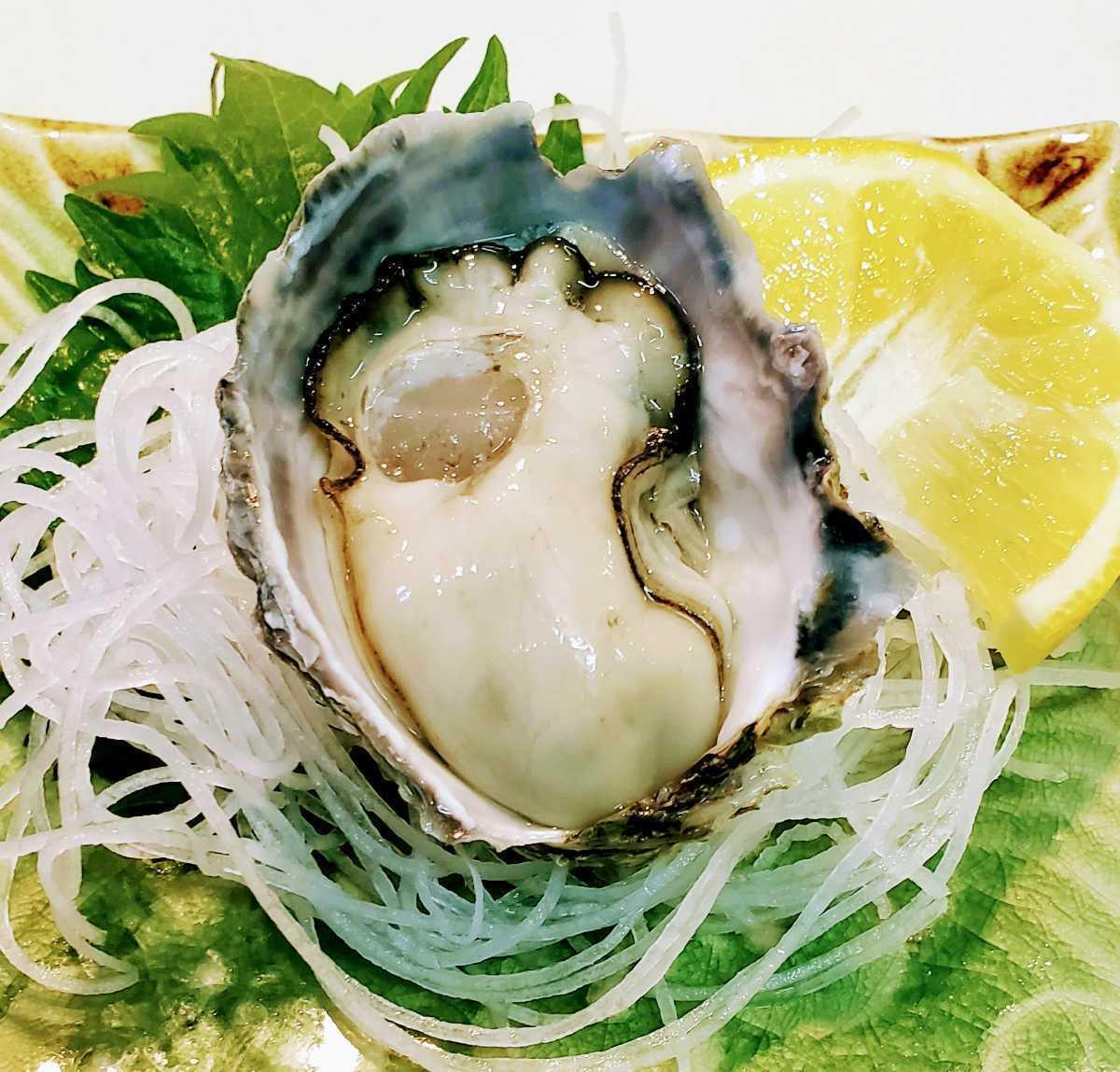 「希少」生食可能 殻付き1キロ 大size 坂越産_画像10