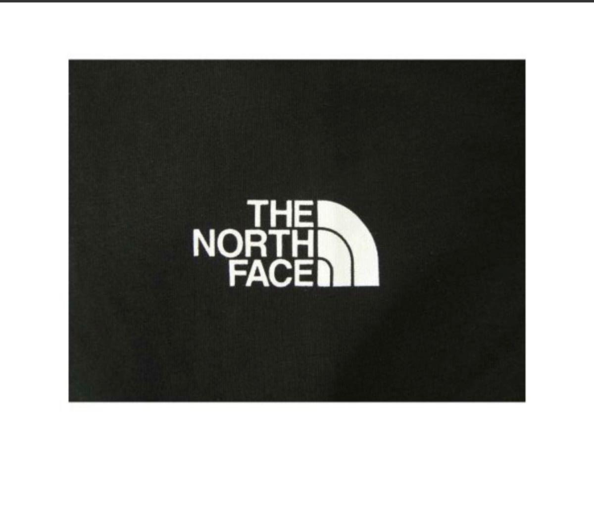 THE NORTH FACE ザノースフェイス Tシャツ NF0A2TX5JK31Mサイズ