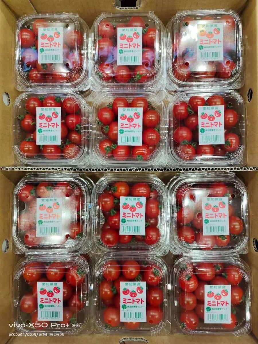 ミニ トマト 1cs 24p _画像1