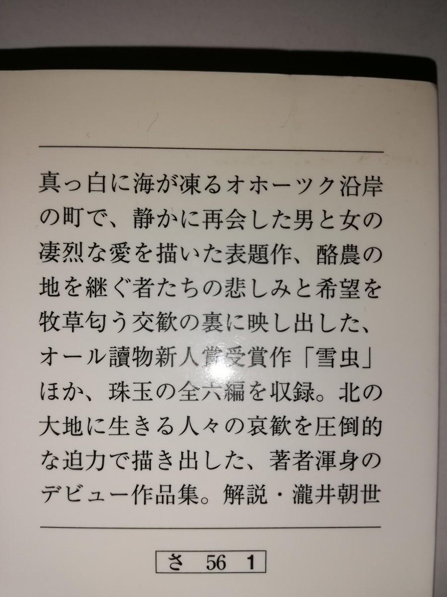 小説 桜木紫乃 氷平線
