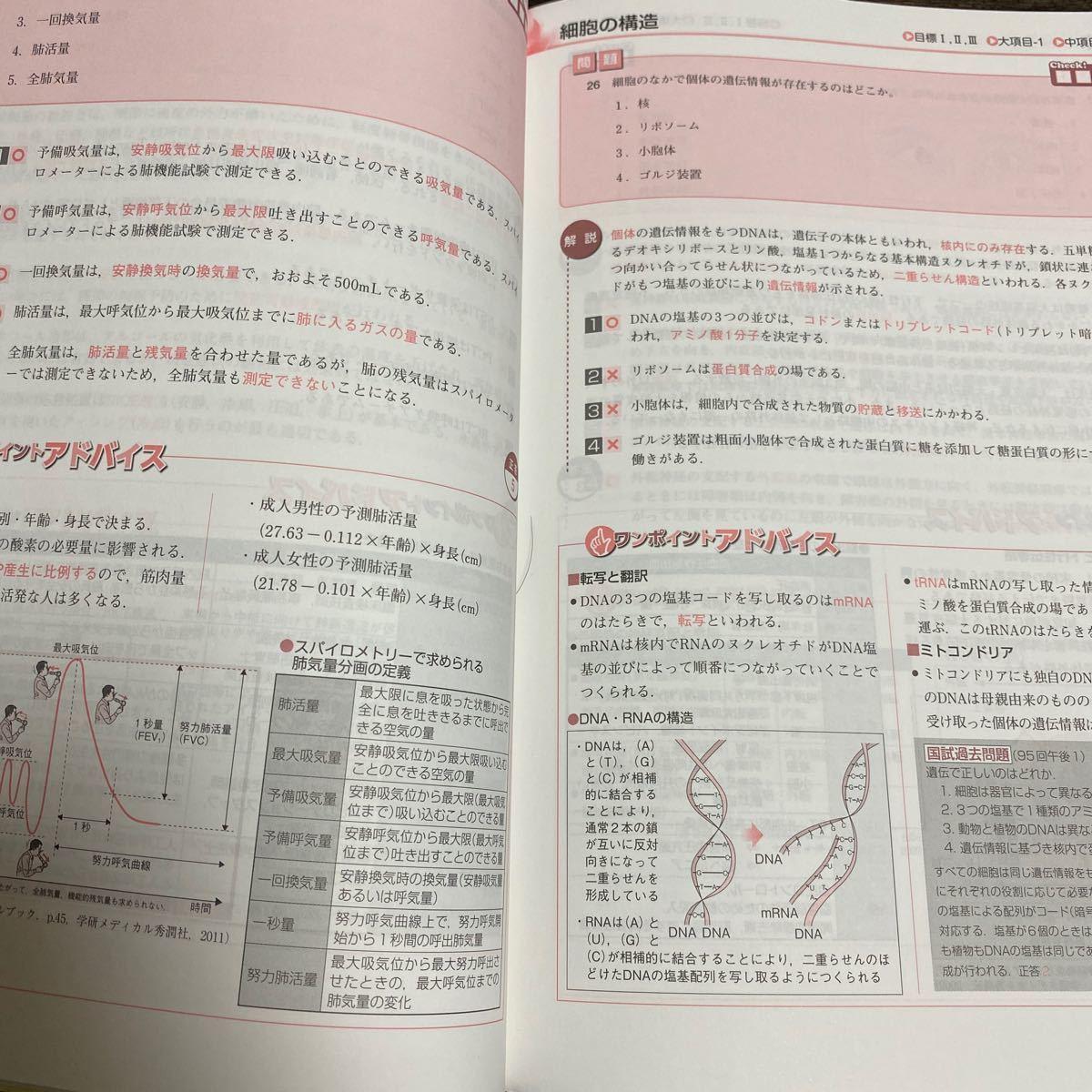 看護師国家試験 予想問題720 (2019年版) 杉本由香 (著者)