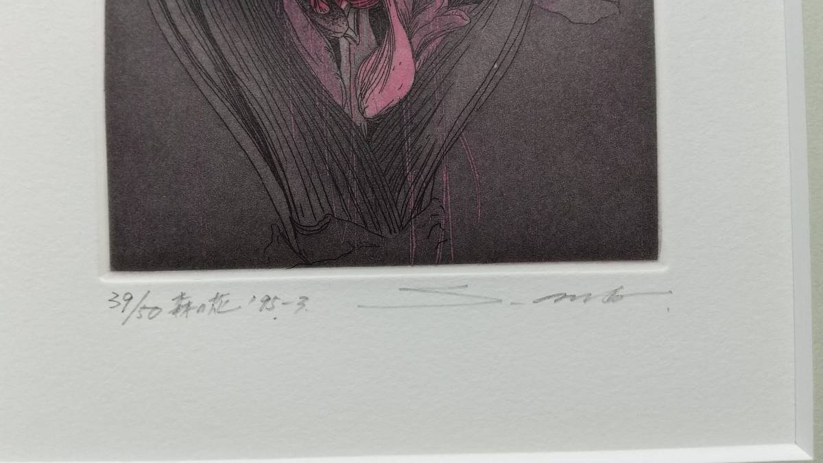 安藤真司 『 森の花 '95-3 』 銅版画 直筆サイン 1995年 50部 額装 【真作保証】_画像2