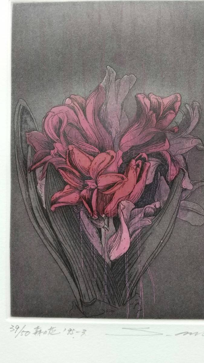 安藤真司 『 森の花 '95-3 』 銅版画 直筆サイン 1995年 50部 額装 【真作保証】_画像3