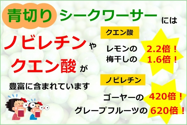 沖縄 青切りシークワーサー 150ml シークヮーサー生姜 330g 2点セット ノビレチン ジンジャーエールの素 温活 お試し2本セット_画像5