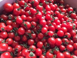 ★美味しいミニトマト 2kg 小粒S以下混合 訳ありです 2★_画像1