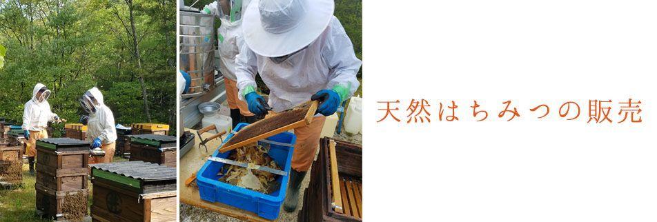 国産天然ハチミツ  百花 200g_画像4