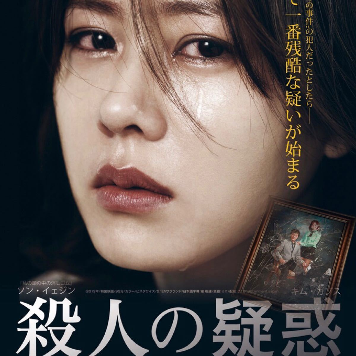 韓国映画  荊棘の秘密  殺人の疑惑  ソン・イェジン  DVD  2点セット  レーベル有り