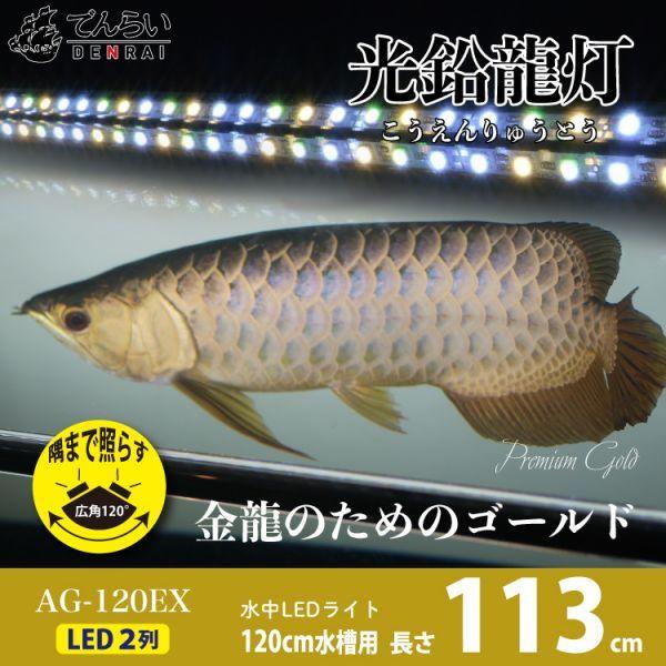 光鉛龍灯 アロワナ プレミアムゴールド LED 2列 大型水槽 水中照明 ライト アクアリウム 熱帯魚 金龍 120cm水槽用 でんらい AG-120EX_画像1