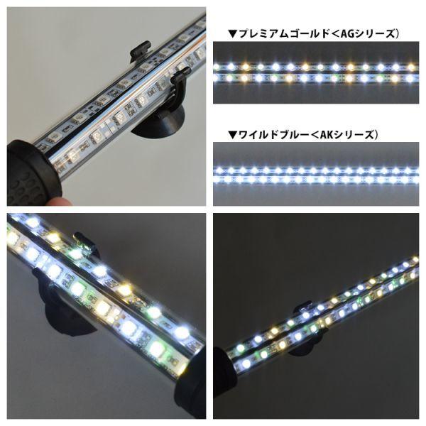 光鉛龍灯 アロワナ プレミアムゴールド LED 2列 大型水槽 水中照明 ライト アクアリウム 熱帯魚 金龍 120cm水槽用 でんらい AG-120EX_画像4