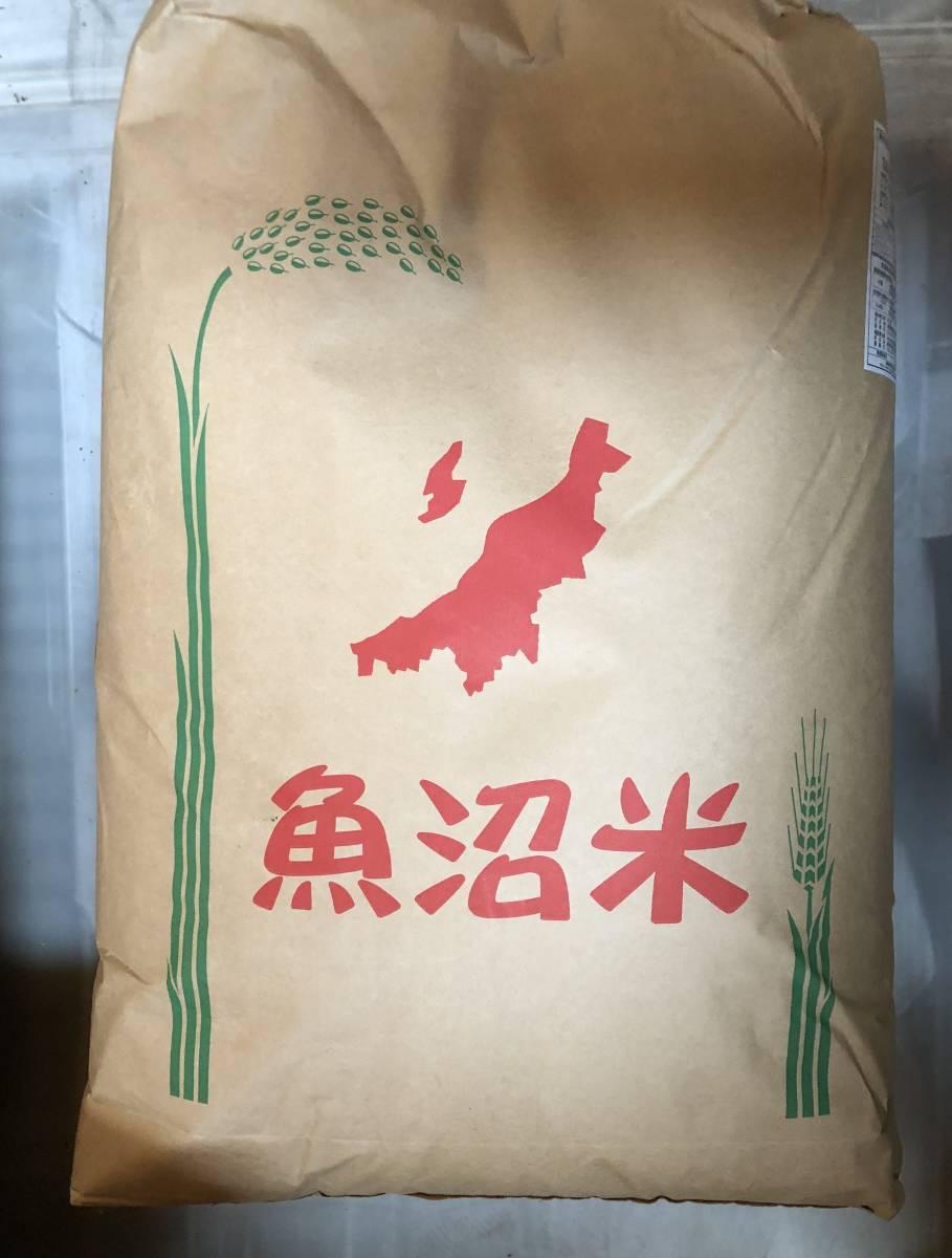 令和2年産 南魚沼産コシヒカリ 中米 玄米24㎏ 送料無料_画像1