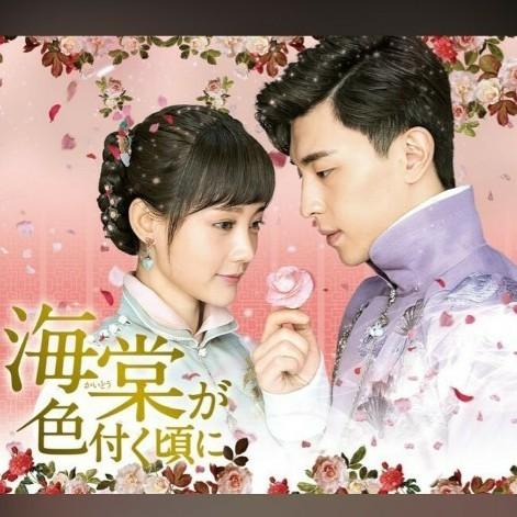 中国ドラマ 海棠が色付く頃に 全話  DVD