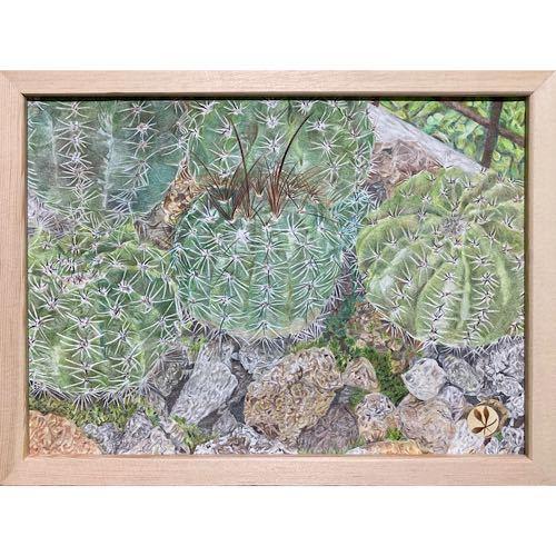 色鉛筆画「 cactus ~ サボテン ~ 」A4・額付き◇◆手描き◇原画◆花◇◆yotto_画像2