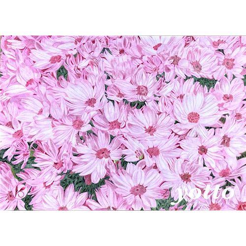 色鉛筆画「 そよかぜ 」A4・額付き◇◆手描き◇原画◆花・風景画◇◆yotto_画像1