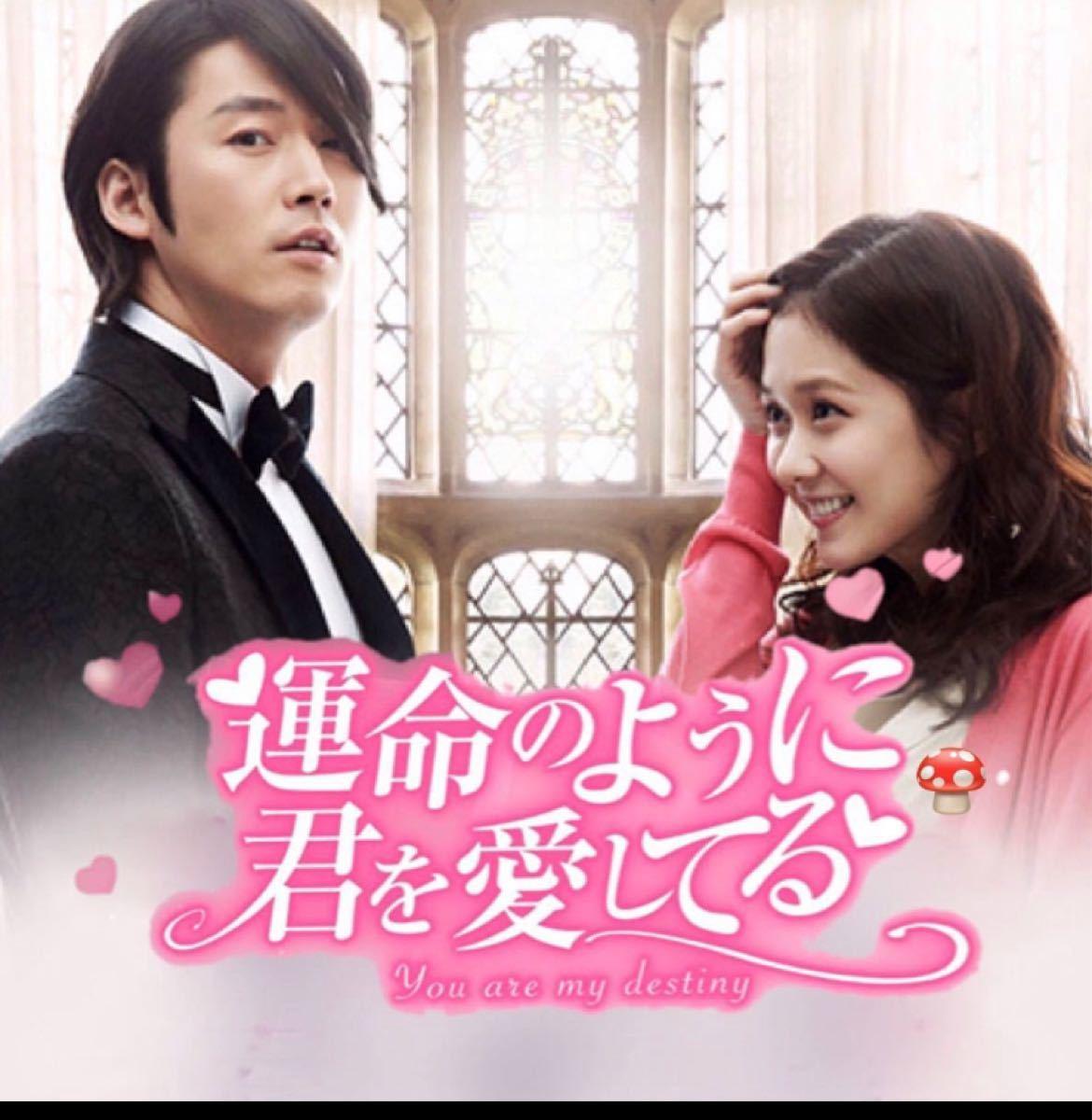 韓国ドラマ Blu-ray 運命のように君を愛してる チャンヒョク チャンナラ価格交渉不可
