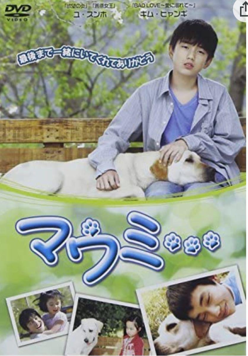 韓国映画 DVD マウミ   ユスンホ 価格交渉不可