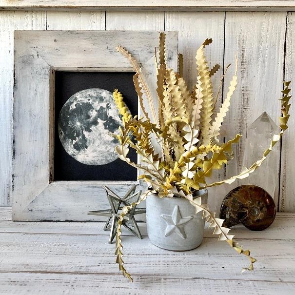 「バンクシアの葉っぱ」カーブ10本セット そのまま飾って可愛いドライフラワー 花材 インテリアやスワッグ 撮影小道具などに_画像5