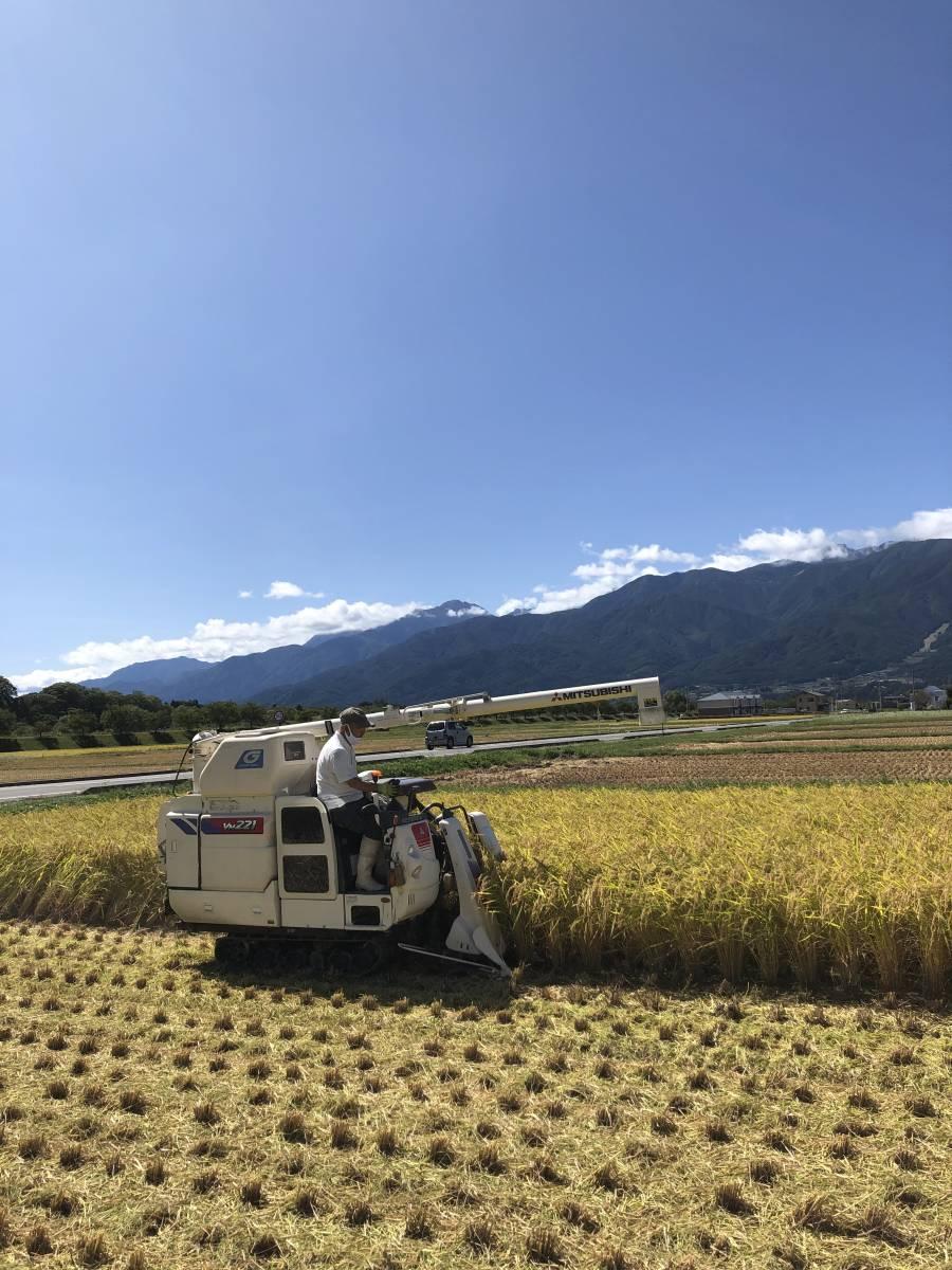 《冷めても美味しい!川下り米》12『玄米』令和2年産減農薬コシヒカリ20kg 8,000円 送料込_画像4