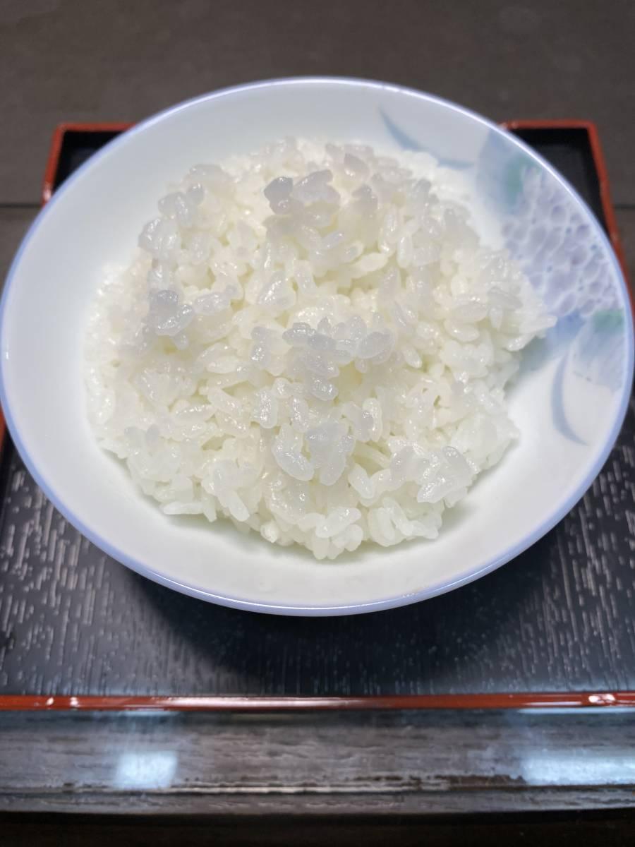 《冷めても美味しい!川下り米》2『白米』令和2年産減農薬コシヒカリ10kg 3,500円 送料込_画像1