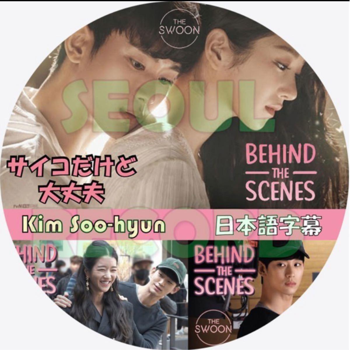 キム・スヒョンサイコだけど大丈夫 ビハインド日本語字幕付 DVDレーベル印刷付DVD