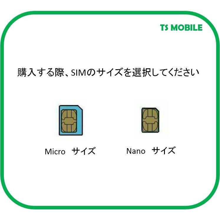 ドコモ 格安SIM 高速データ容量 1G/日 050番号付き12ヶ月プラン(Docomo 格安SIM 12ヶ月パック) プリペイドsim データ通信 日本国内_画像5