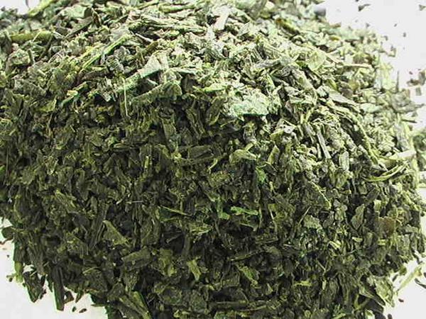 【業務用】 あじまろ緑茶(1kg) 煎茶 掛川産緑茶◆お得価格で_お得な業務用1kgサイズをどうぞ!