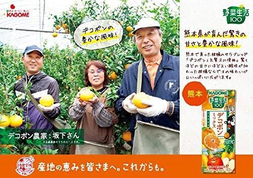 【即決・送料無料】カゴメ 野菜生活100 デコポンミックス 195ml 24本_画像2