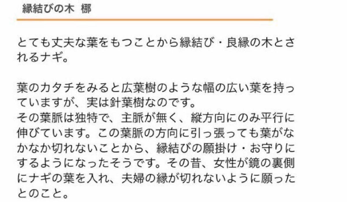 【23】人生という航海を平穏無事に送れますように 神が宿る木 ナギ 美濃焼鉢ブルー