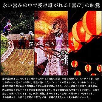 宮崎名物 焼き鳥 鶏の炭火焼 100g×10パック 鳥の炭火焼 炭火焼 鳥の炭火焼き 焼鳥 炭火焼鳥_画像4