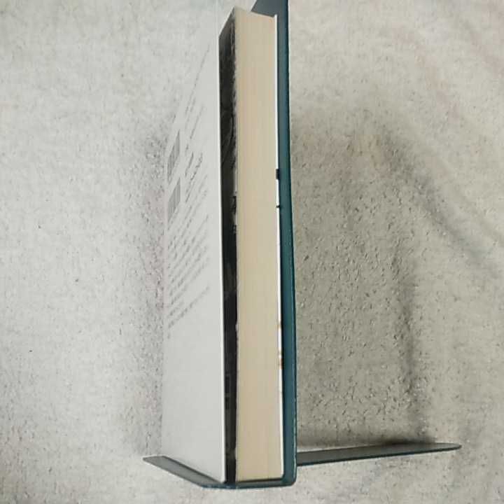 ハイスクールD×D3 月光校庭のエクスカリバー (富士見ファンタジア文庫) 石踏 一榮 みやま 零 9784829133910_画像4