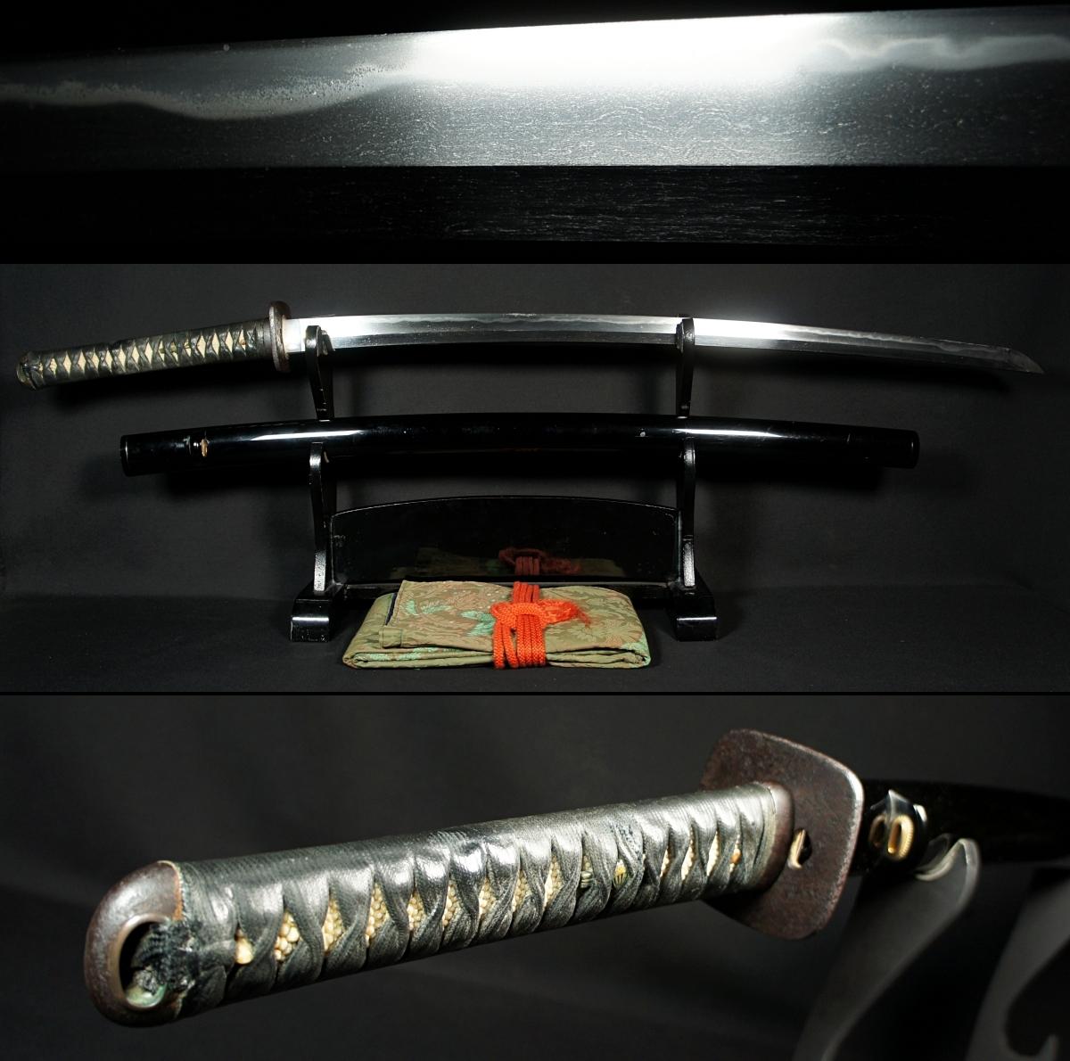 薩摩現代刀の巨匠【薩州住源盛篤(花押)】約2尺5寸 重量1kg超の幅広豪壮刀 芋蔓走る薩摩相州伝の優品 時代肥後拵 国広在銘肉厚鉄鍔
