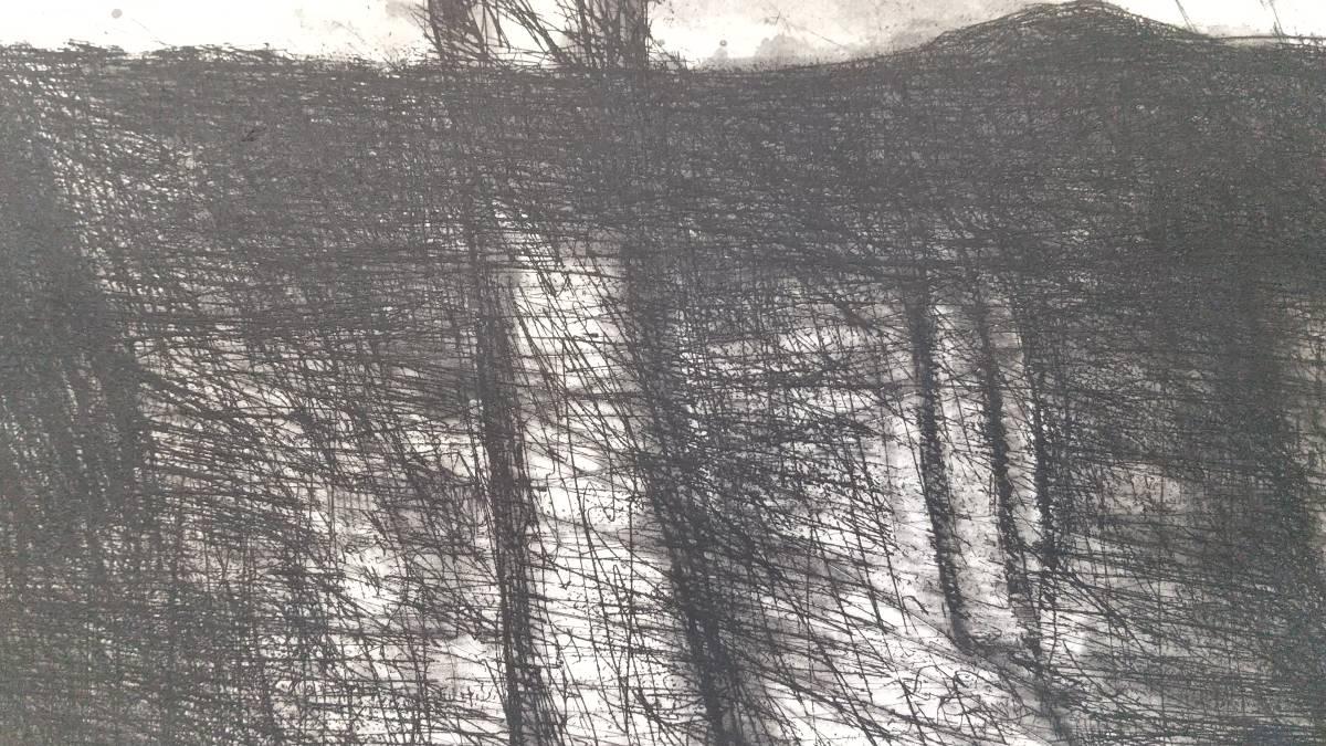 赤塚祐二 『 tree 』 銅版画 直筆サイン入り  1995年制作  限定15部  額装  【真作保証】 さし箱付き_画像6