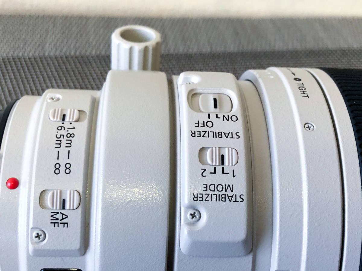【極美品・禁煙・防湿庫保管】EF100-400mm F4.5-5.6L IS USM_画像5