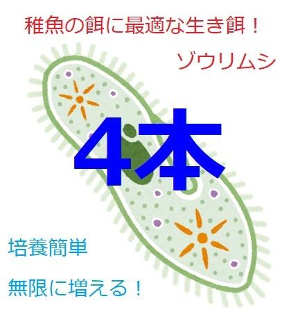 ●ゾウリムシ 種水 メダカ グッピー ベタ 稚魚 針子 餌 超濃縮 タレビン 48ml×4本●_画像1