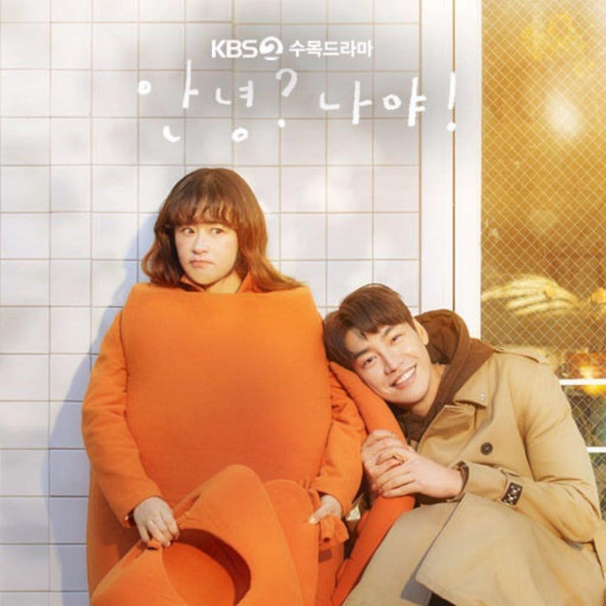 韓国ドラマ こんにちは私だよ! DVD『レーベル印刷有り』
