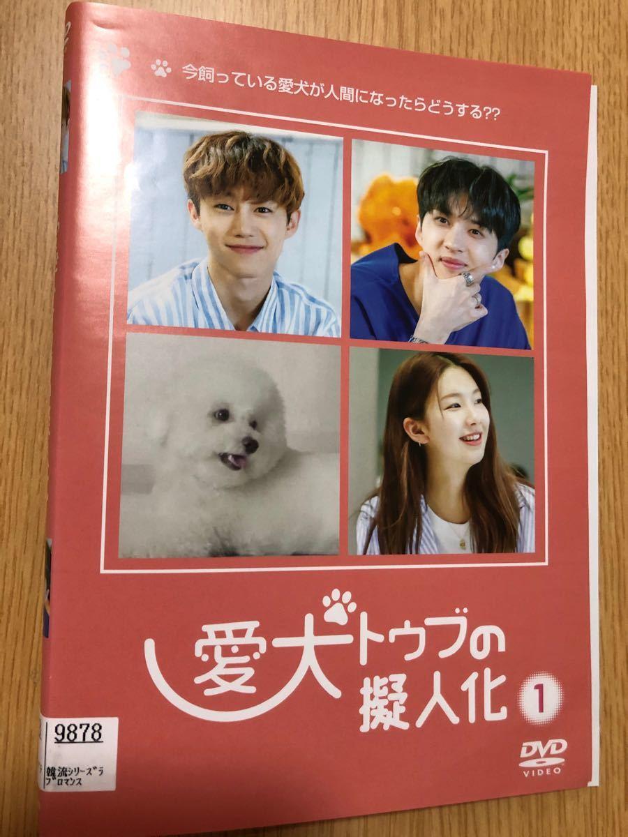 韓国ドラマ 「愛犬トゥブの擬人化」レンタル落ち DVD3枚