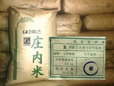 □Gセレクション!令和2年産!山形庄内産はえぬき 玄米25kg(白米22.5kg)送料無料_画像1