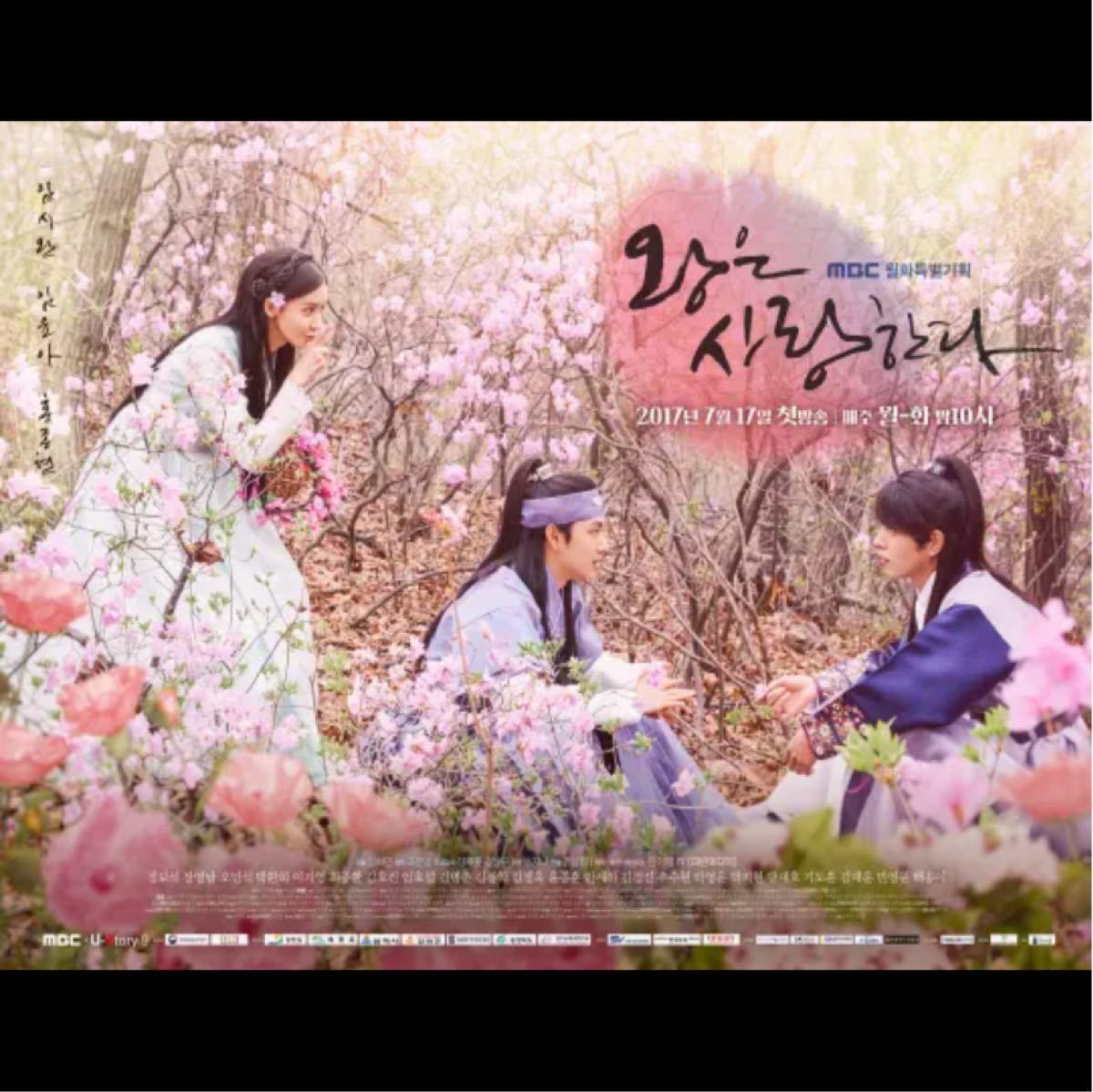 ☆韓国ドラマ☆『王は愛する』 Blu-ray  全話 クリアケース入